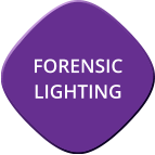 Forensic Lighting Page Button
